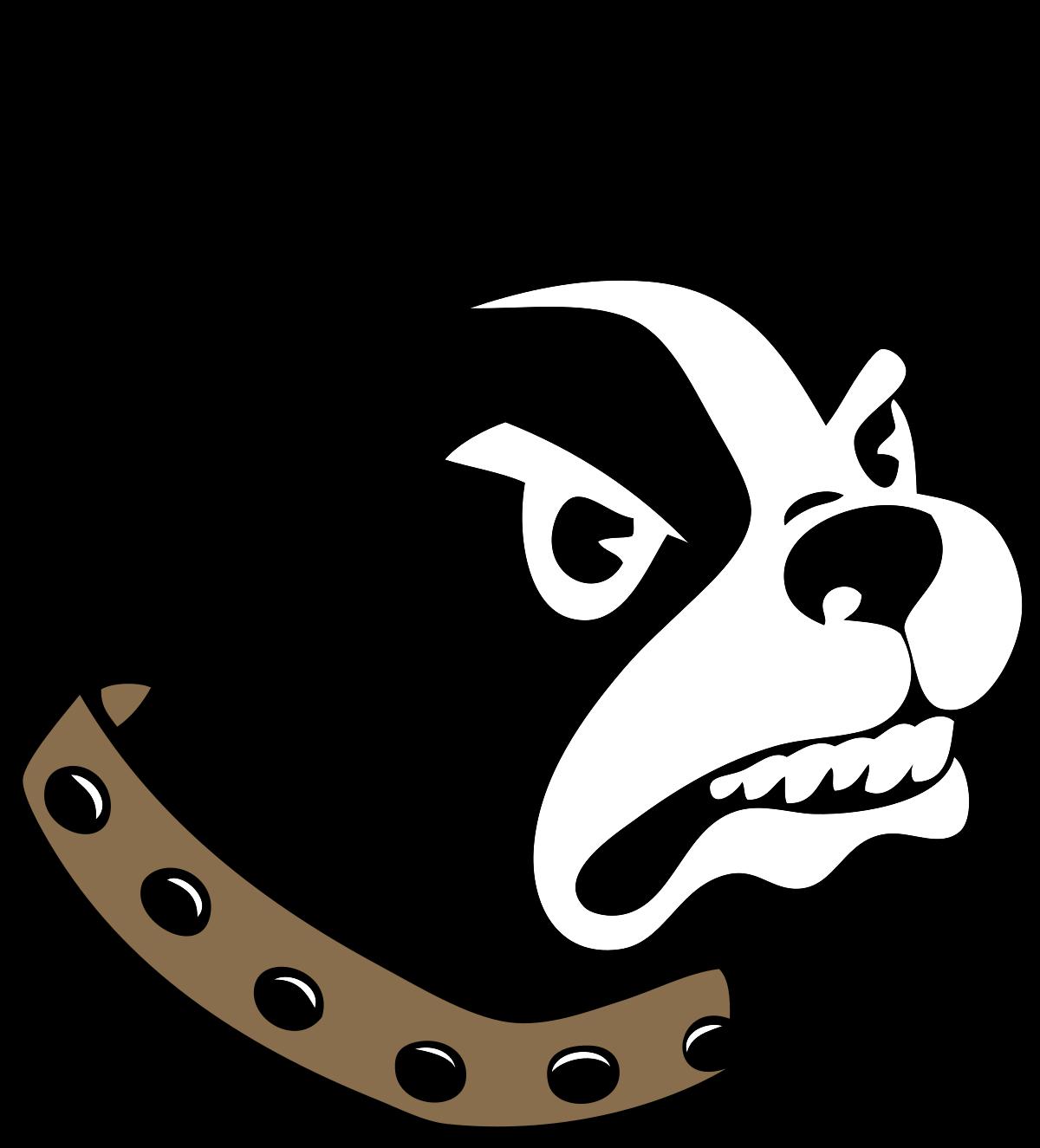 Team logo 251