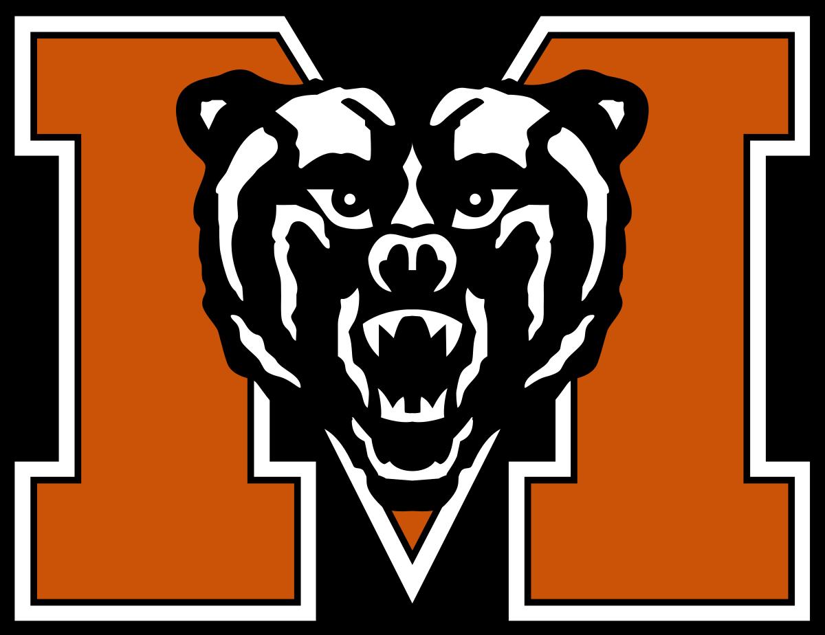 Team logo 263