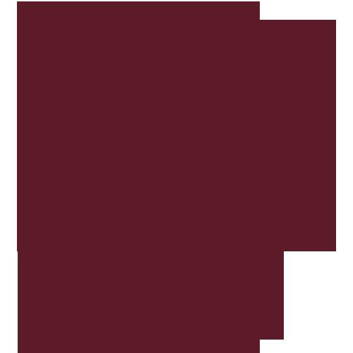 Team logo 272